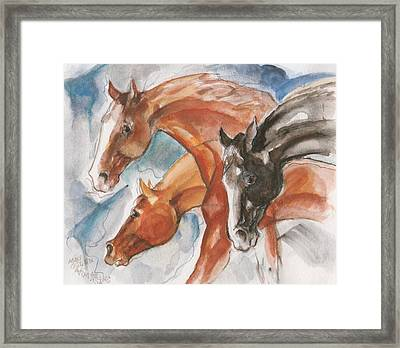 Three Horses Framed Print by Mary Armstrong