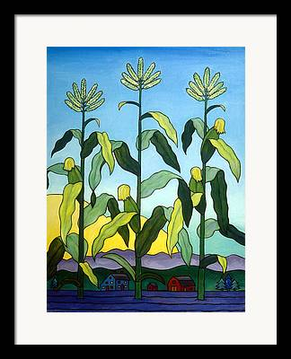 Cornstalks Framed Prints