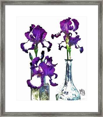 Three Irises In Vases Framed Print by Marsha Heiken