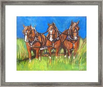 Three Is Company Framed Print