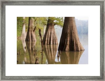 Three Kings Framed Print