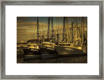 Three Ladies Of The Gulf Framed Print by Marvin Spates