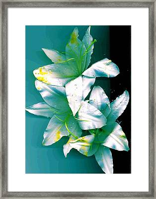 Framed Print featuring the photograph Three Lilies by Carolyn Repka
