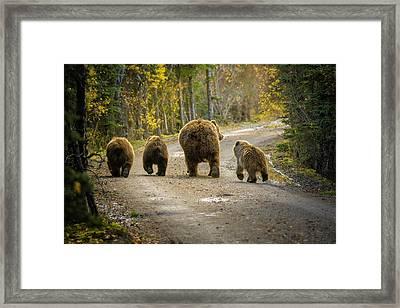 Three Little Bears And Mama Framed Print