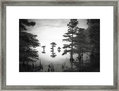 Three Little Brothers Framed Print by Eduard Moldoveanu