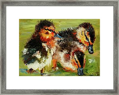 Three Little Ducks Framed Print