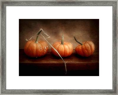 Three Little Pumpkins Framed Print