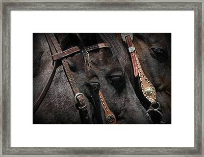 Three Of A Kind Framed Print by Carla Froshaug