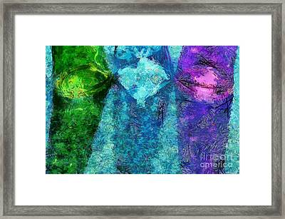Three Of A Kind Framed Print by Krissy Katsimbras