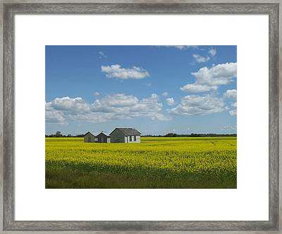 Framed Print featuring the photograph Three Of A Kind by Mary Mikawoz