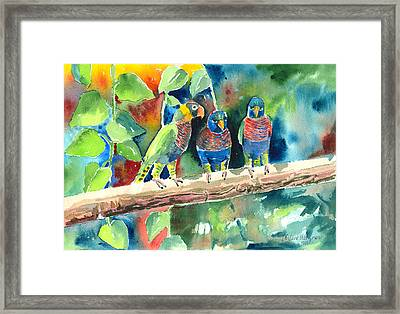 Three On A Branch Framed Print