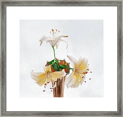 Three Pale Gold Lilies Still Life Framed Print