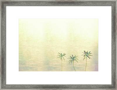 Three Palms In Color Framed Print
