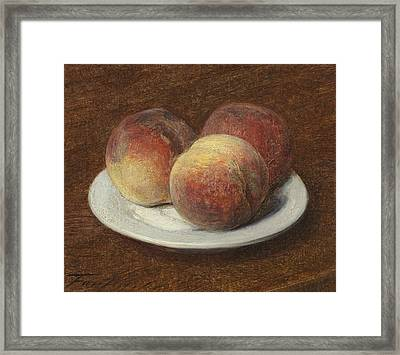 Three Peaches On A Plate Framed Print by Ignace Henri Jean Fantin-Latour