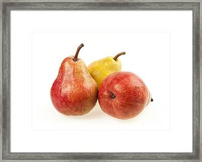 Three Pears Framed Print by Elena Elisseeva