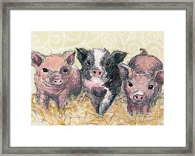 Three Piglets Framed Print by Blackwater Studio