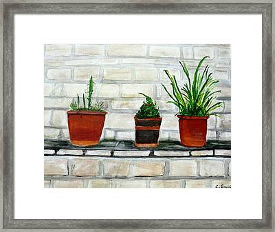 Three Pots Framed Print by Cathy Jourdan