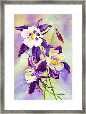 Three Purple Columbine Blossoms Framed Print