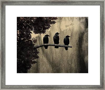 Three Ravens Branch Out Framed Print