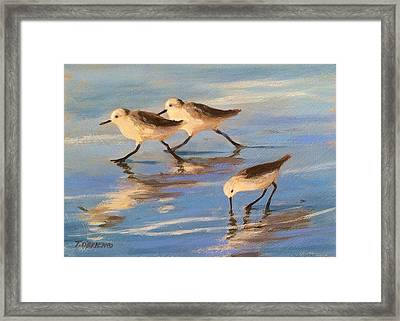 Three Sandpipers Framed Print by Tina Obrien