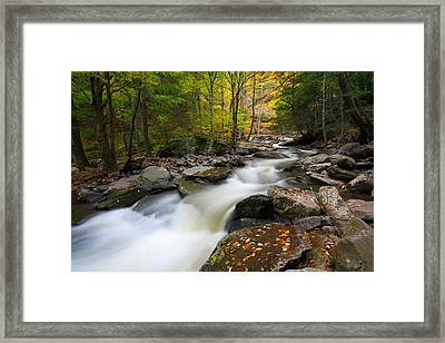 Three Seconds In Fall Framed Print
