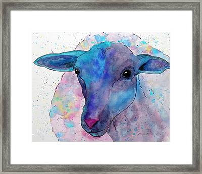 Three Sheep,  3 Of 3 Framed Print
