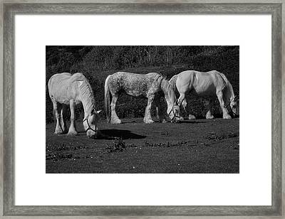Three Shires Framed Print