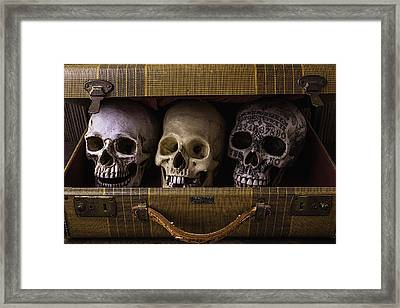 Three Skulls In Suitcase Framed Print by Garry Gay