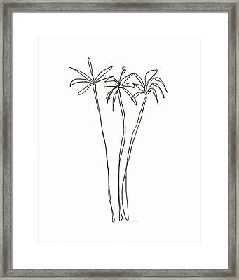 Three Tall Palm Trees- Art By Linda Woods Framed Print