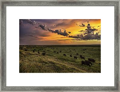 Three Framed Print by Thomas Zimmerman