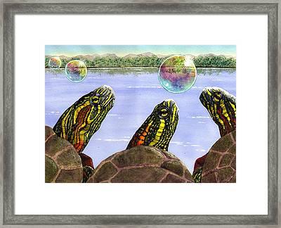 Three Turtles Three Bubbles Framed Print