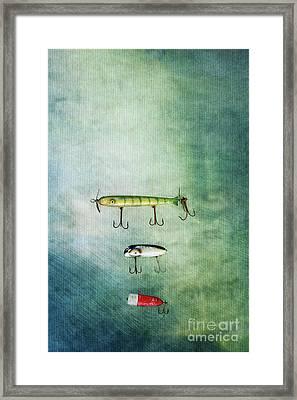 Three Vintage Fishing Lures Framed Print