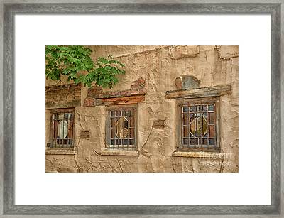 Three Windows Framed Print by Tamera James