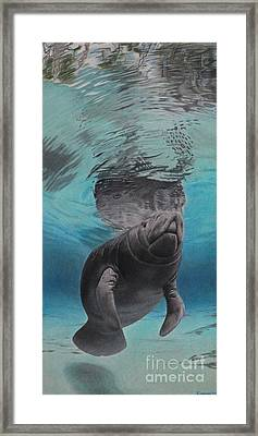 Three Worlds II Framed Print