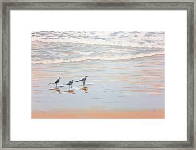 Three's A Crowd Framed Print
