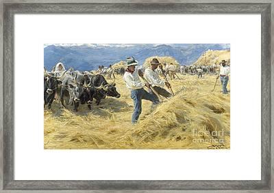 Threshing In The Abruzzi, 1890 Framed Print
