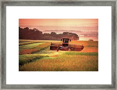 Swathing On The Hill Framed Print