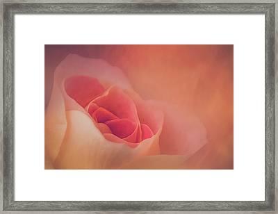Through A Dream Framed Print