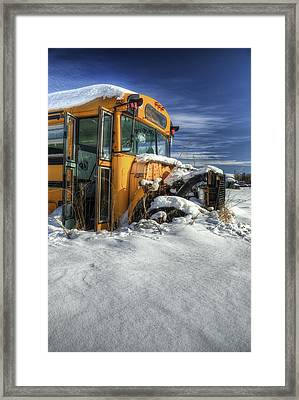 Through And Through Framed Print by Wayne Stadler