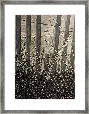 Through The Beach Fence Framed Print