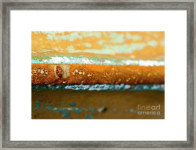 Framed Print featuring the photograph Through The Centre by Wendy Wilton