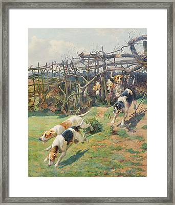Through The Fence Framed Print by Arthur Charles Dodd
