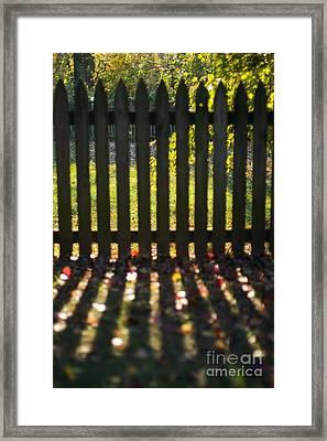 Through The Fence Framed Print by Hideaki Sakurai