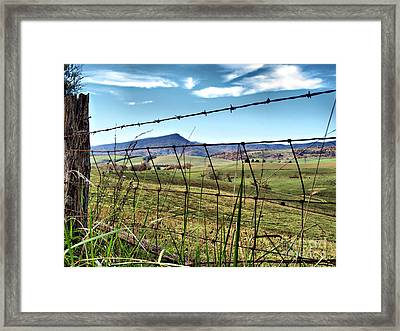 Through The Fence Framed Print by Kathy Jennings