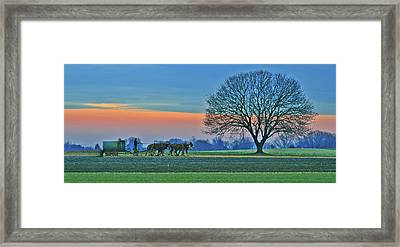 Through The Fields Framed Print