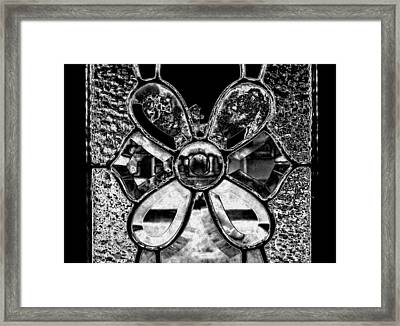 Through The Glass  2 Framed Print by Laura DAddona