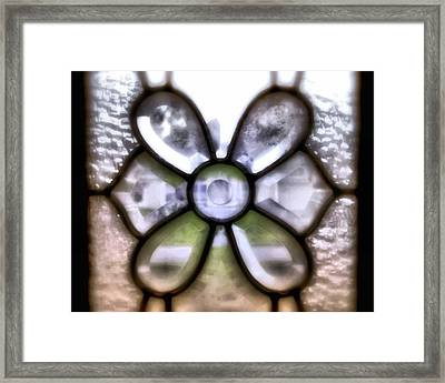 Through The Glass Framed Print by Laura DAddona