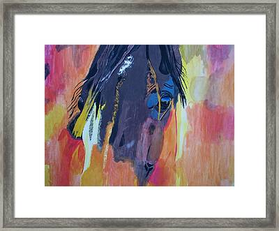 Through The Horse's Eyes Framed Print