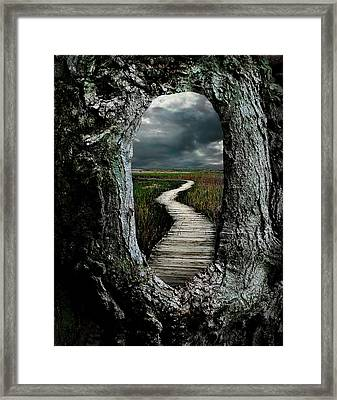Through The Knot Hole Framed Print