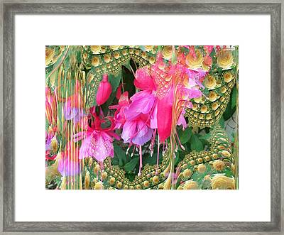 Through The Lace Curtains Framed Print by Nancy Pauling